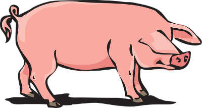 Forex Analysis: Flexibility & Mind That Pig