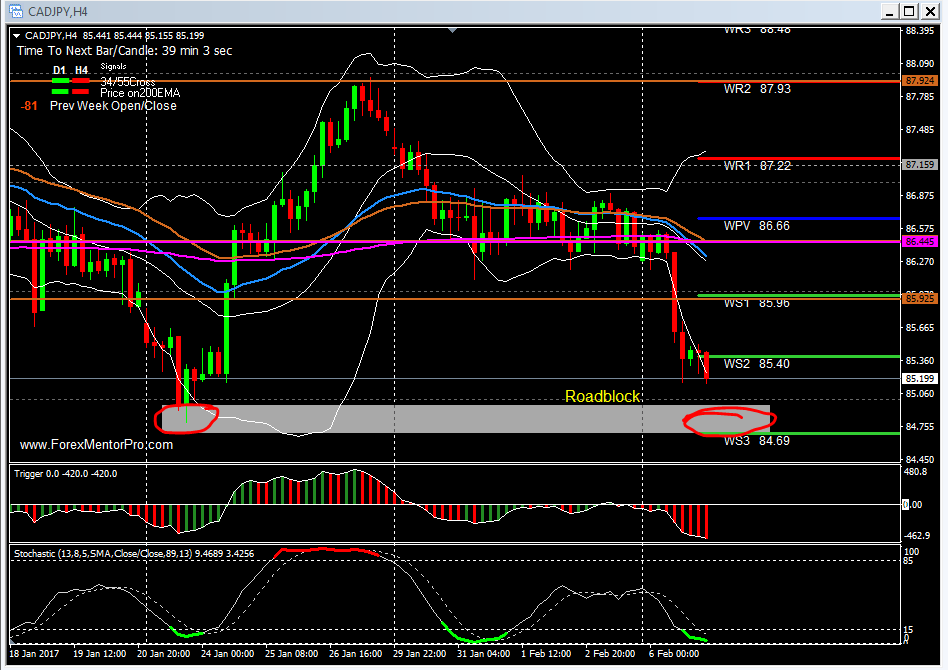 CAD/JPY pair and NZD/CAD pair